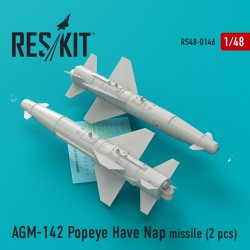 AGM-142 Popeye Have Nap missile (2 штуки) (1/48)
