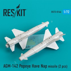 AGM-142 Popeye Have Nap missile (2 штуки) (1/72)